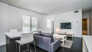 salon d'un appartement en location saisonniere a miami beach